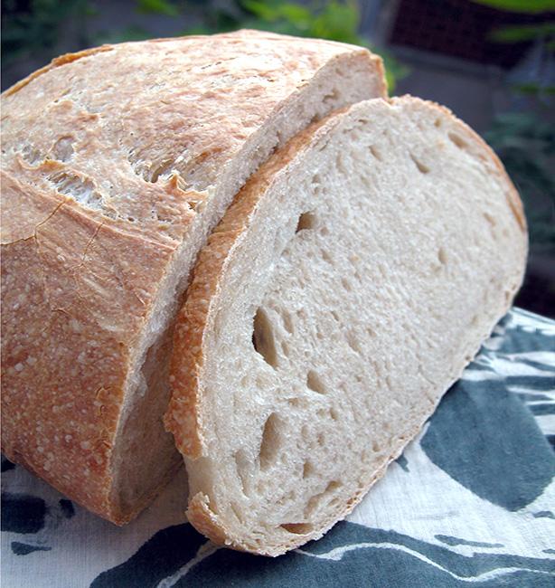 pane con la pasta madre liquida
