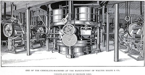 cocoa manufacturing