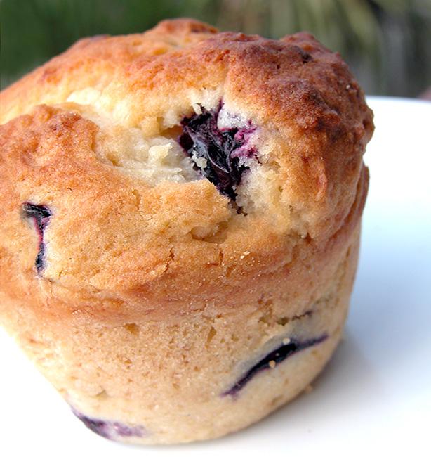 muffin ai mirtilli ricetta