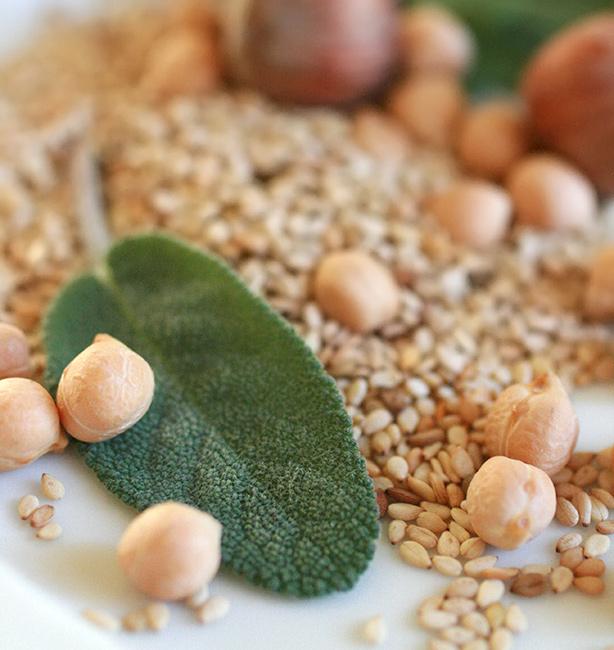 bioterapia nutrizionale osteoporosi