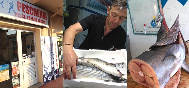 pescheria barracuda palau