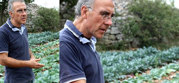 Renato Sisto