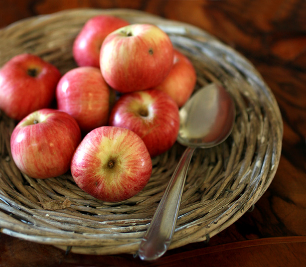 mele antiche bari