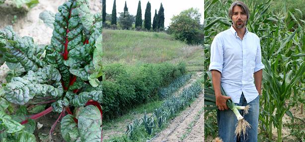agricoltura biodynamica