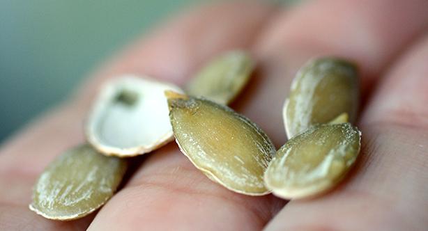 come tostare i semi di zucca