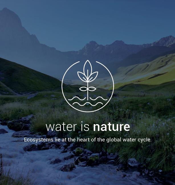 giornata mondiale dell'acqua 2015