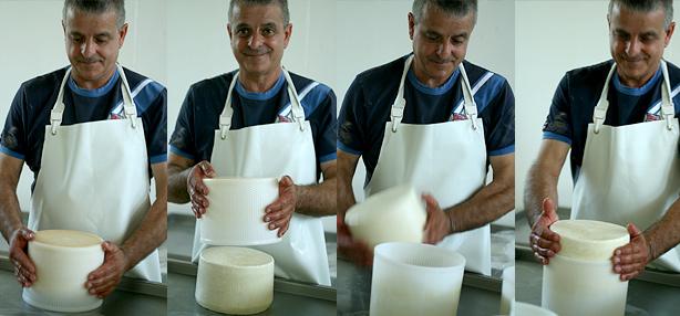 lavorazione del pecorino