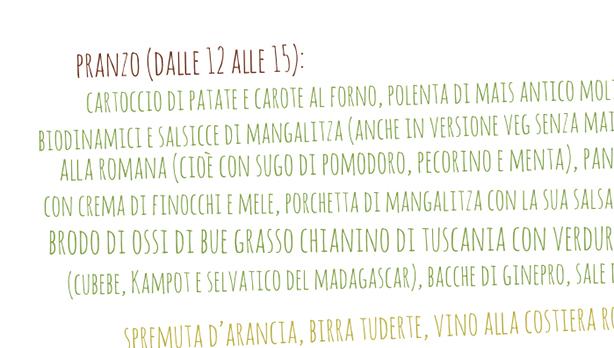 street food biologico Roma nord