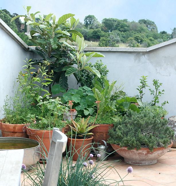orto sul terrazzo