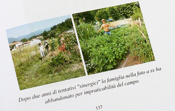 agricoltura sinergica problemi