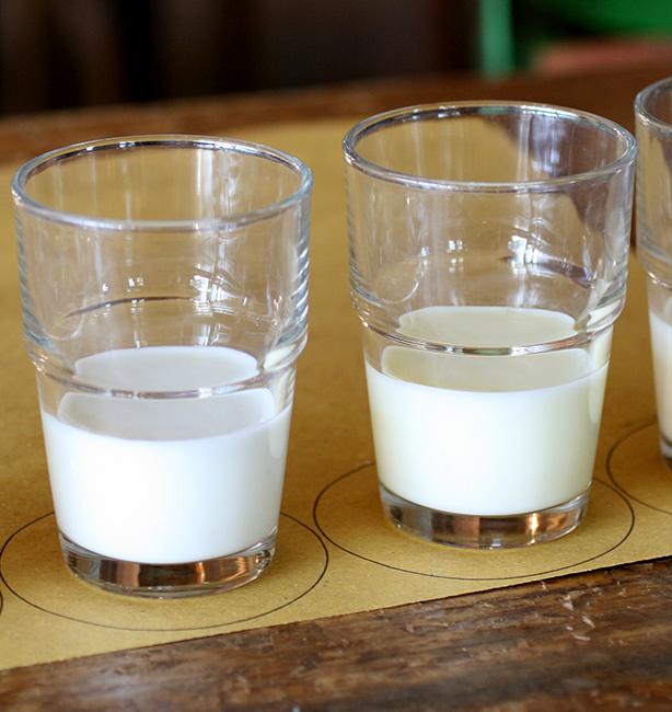 latte quale bere