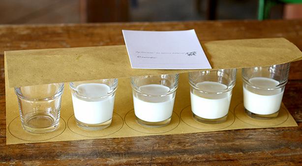 comparazione latte