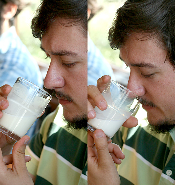 latte d'erba