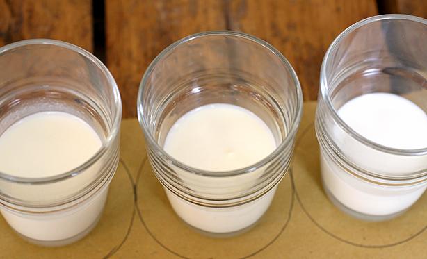 latte esperienza visiva
