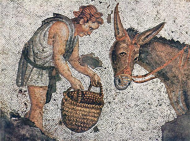 apuleio mosaico