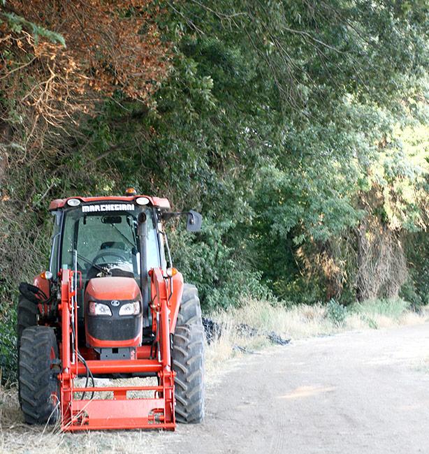 aziende agricole biodinamiche