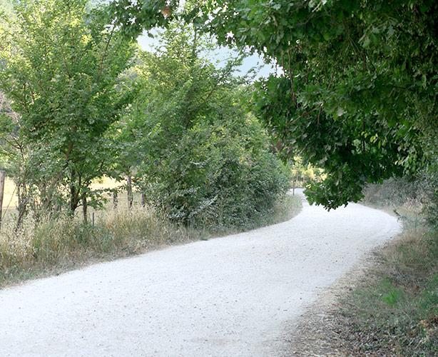 semia bio azienda agricola roma