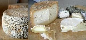 formaggio di capra a latte crudo