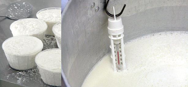 temperatura del latte