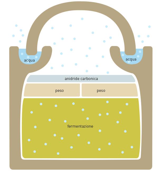 vaso di fermentazione